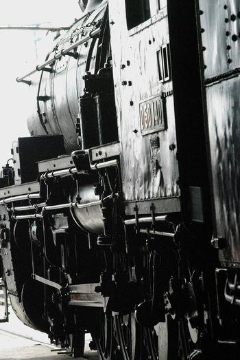 蒸気機関車 機関車庫 SL 梅小路蒸気機関車館