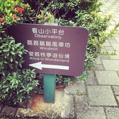 覺得好累。 💔 就是愛荔枝 彰化 芬園 Taiwan 初五 看山小 芬園人不用錢 每人入園100元 不可抵餐費 東西不錯吃 可是價位太高 沒辦法 遊樂區