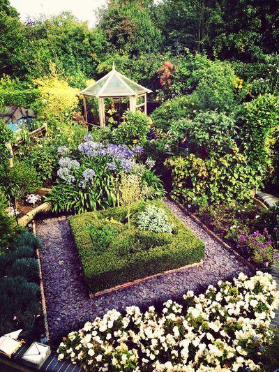 Grandads Garden Sunny☀ Enjoying Life