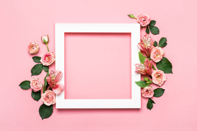 High angle view of rose bouquet against pink background