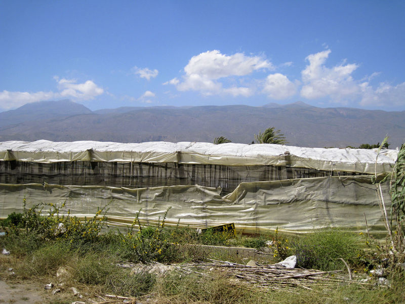 Plastic greenhouses in the Andalusian landscape. Agriculture Andalucía End Plastic Pollution Road Agricultural Day Food Fruit Greenery Greenhouse Invernadero Landscape Mountain Nature No People Outdoors Plastic Sky Tomato Tomatoes Vegetables Warm