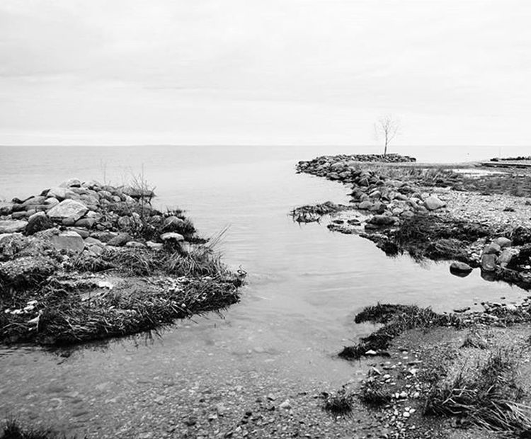 Inlet Reimerpics Landscape Photo Blackandwhite Ontario Georgianbay