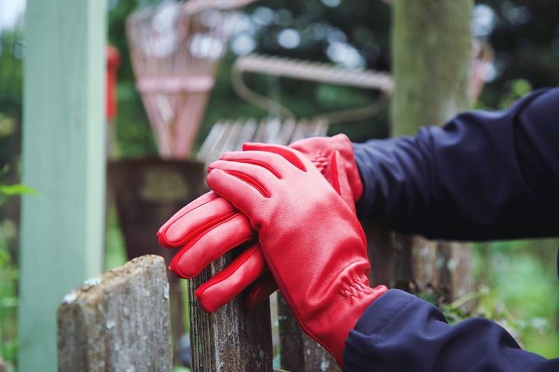Fall Coffee Real People One Person Focus On Foreground Red Human Body Part Hand Human Hand Lifestyles Day Close-up Holding Leisure Activity Fence Glove Boundary Women Barrier Outdoors Unrecognizable Person