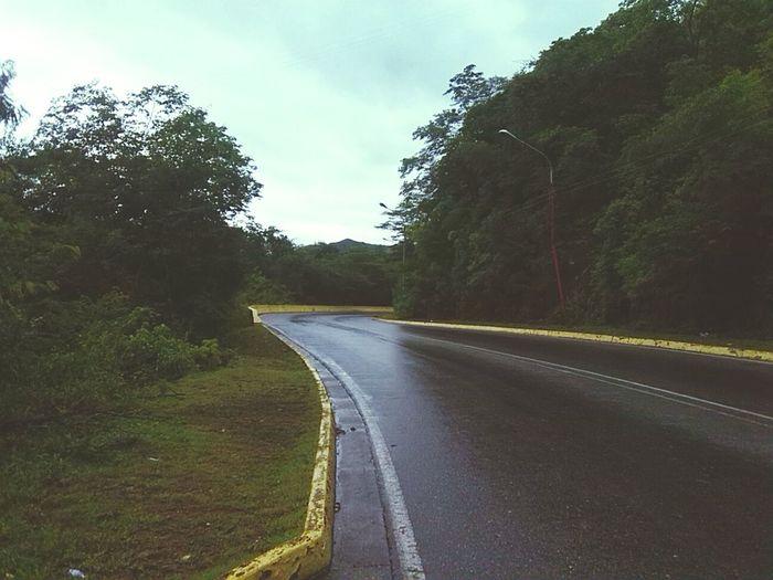 Caminando Por Ahi Maracay