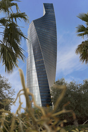 garden & city Kuwait Kuwait City Kuwait❤ Architecture Building Exterior Built Structure City Day Kuw Low Angle View Modern No People Outdoors Palm Tree Sky Skyscraper Travel Destinations Tree