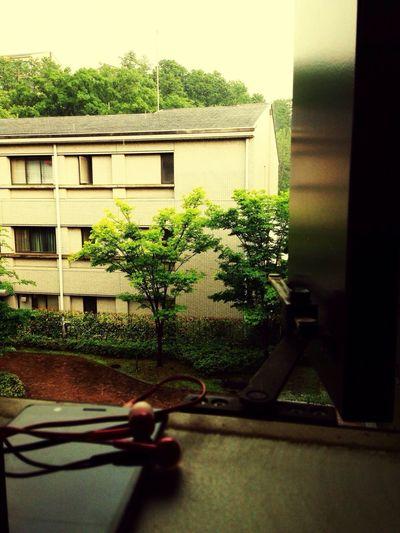 Sommergefühle RainAndSun Capture The Moment Smellofrain