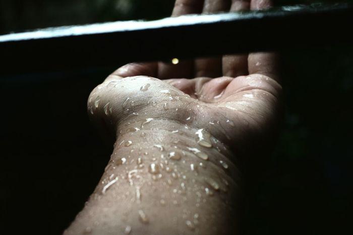 Nature's diversity. Droplets Of Water Rainy Afternoon. Monsoon Diaries EyeEmNewHere EyeEm Gallery
