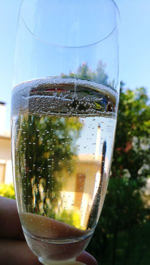 Champagne Dissolving Alcohol Drink Cold Temperature Drinking Glass Bubble Champagne Flute Alcoholic Drink Celebratory Toast