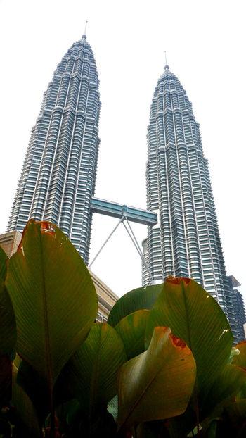 By Day Kuala Lumpur Malaysia Petronas Twin Towers