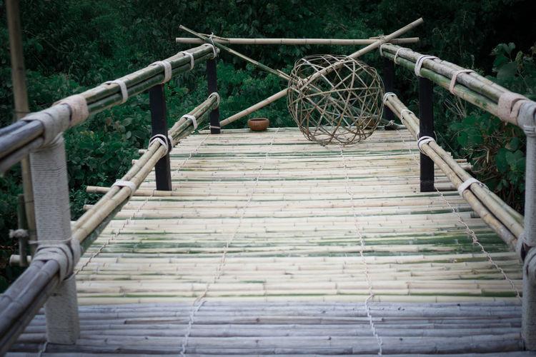 Footbridge Tree