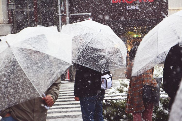 Snowing on Tokyo! Tokyo Japan Photography Japan Streetphotography Street Photography Street Lights City Low Section Men Women Pedestrian Road Walking Wet Street City Life Umbrella Snowing Snowfall Crosswalk Snow Blizzard Snowflake Adventures In The City The Street Photographer - 2018 EyeEm Awards