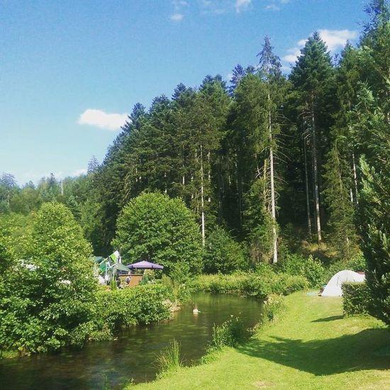 Idylle8000 Schwarzwald Altensteig Motorbike Tour fishing bbq natur camping friendstime qualitytime