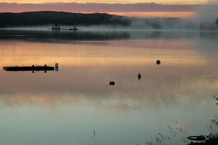 Foggy Morning Fog Fog_collection Water Reflections Water_collection Beauty In Nature Tranquility No People Outdoors Växjö  Sweden Majestic Nature Reflection Lake