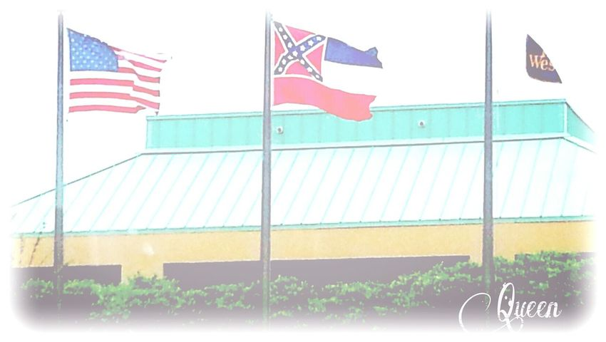 Mississippi  Thesouth Flags