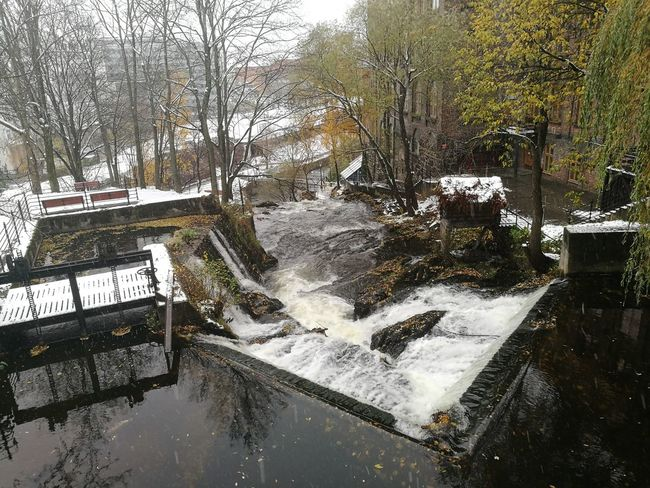 Water Tree No People Wet Day Outdoors November Ice Norway Norge City City Life Oslo Waterfall Akerselva