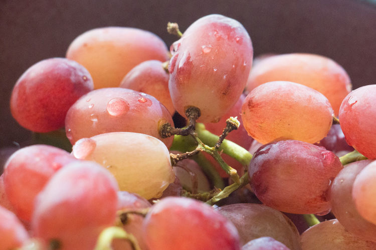 Close-up of fresh wet red grapes bunch