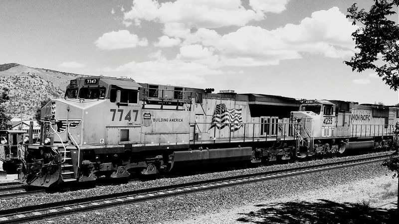 Monochrome Train California USA Blackandwhite Photography Holiday Trip TehachapiCalifornia Trainphotography Trains_worldwide Trainspotting