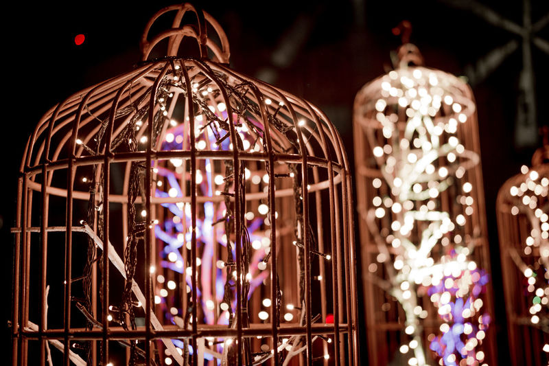 Bird cage with