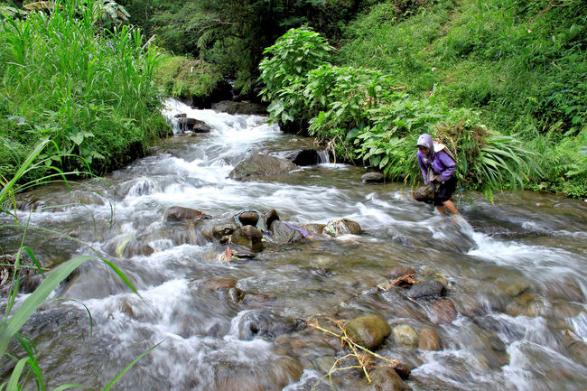 Adventure Beauty In Nature Daily Life Day Forest Indonesia Culture Indonesia_photography Nature Naturelovers One Person Outdoors River Rock - Object Rural Life Rural Photography Stream - Flowing Water Water Waterfall