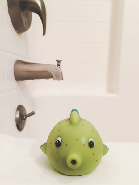 Plumbing Bath Bathroom Water Damage Bathtub Bath Toy Leak Plumber Renovation Fish Uh Oh White Background Still Life No People Green Domestic Room Close-up