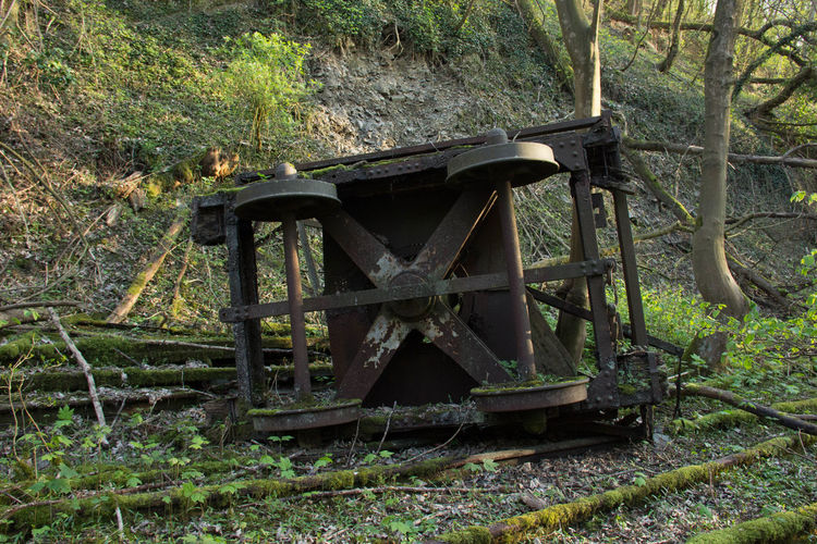 Abandoned Abandoned Places Day Field Growth Nature No People Old-fashioned Outdoors Tree Wood - Material The Secret Spaces Derailed Derailed Wagon Derailed Train Break The Mold