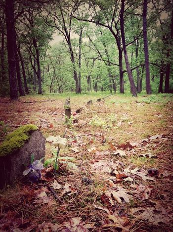Cemetery Cemeteryscape At Rhode Island IPhoneography