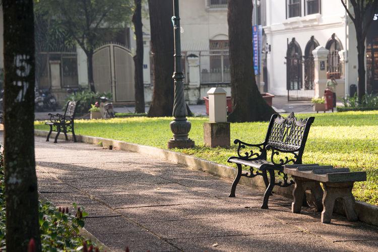 Bench Seat Morning Vietnam