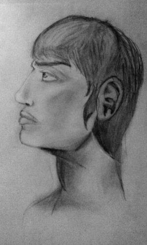 Man Portrait Of A Man  Man Profil Bw Portrait Art Drawing Creativity