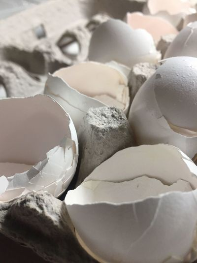 After breakfast Prepare Food Egg Shell Debris Cooking Breakfast Cracked Broken Egg Food And Drink Cracked Food Indoors  Close-up Eggshell Egg Carton No People Healthy Eating Freshness