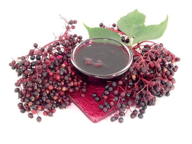 Brotaufstrich Close-up Drink Elderberry Elderberry Blossom Elderberry Jelly Food Freshness Fruit Gelee Healthy Eating Holundergelee Holundersaft Jam Jelly Marmelade Nature No People Red Saft  White Background