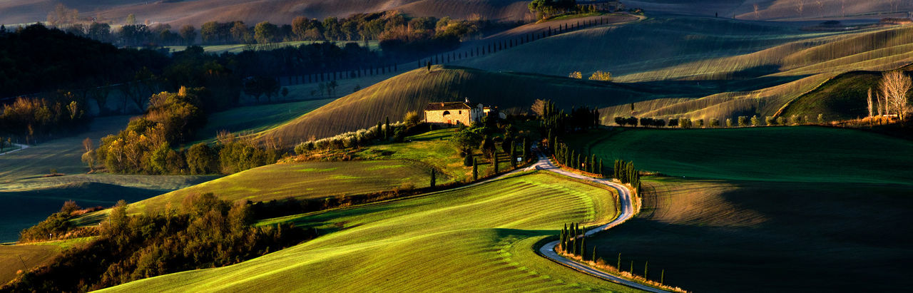 Scenics - Nature Landscape Green Color Environment No People Beauty In Nature Land Tree Tranquility Grass Rolling Landscape Tuscany Toscana Hills Countryside Sunrise Scenic Tourist Attraction  Road