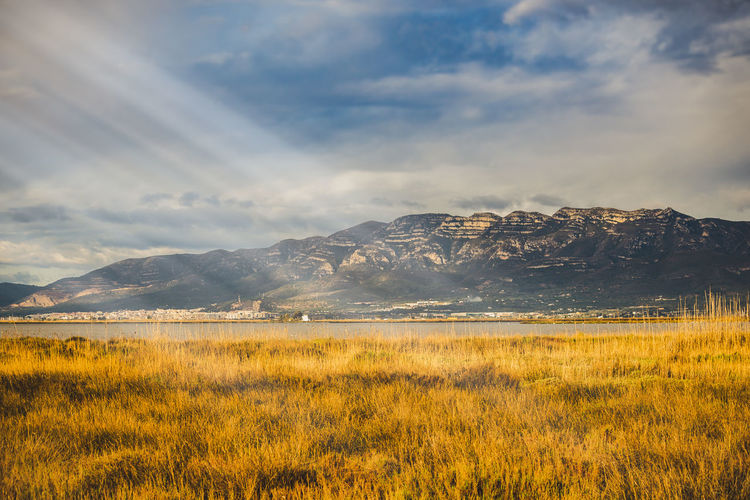 Scenic landscape with golden field hills and sun beams. Beauty In Nature Cloud - Sky Day Environment Field Grass Growth Land Landscape Mountain Mountain Range Nature No People Non-urban Scene Outdoors Plant Scenics - Nature Sky Sun Beams Sun Light Tranquil Scene Tranquility Yellow