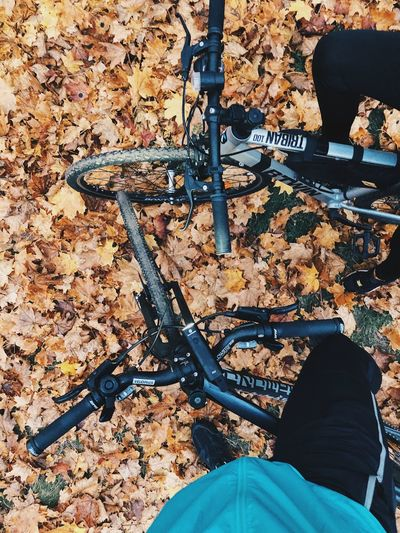 High angle view of person with bicycle on street