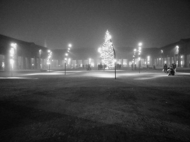 B&w Street Photography Lugo Di Romagna Romagna Albero Di Natale Centro Storico Pavaglione Nebbia Parco Notte Piazza
