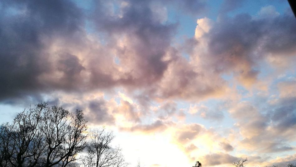 Sunset Multi Colored Flying Dramatic Sky Storm Cloud Sky Cloud - Sky Cloudscape Atmospheric Mood Moody Sky