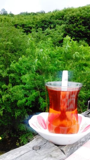 a combination of both nature and tea..