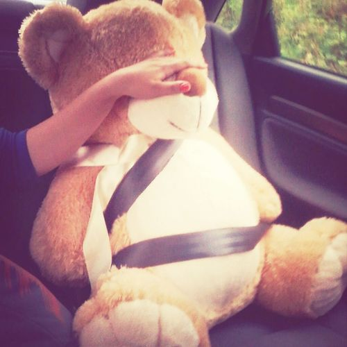 From My Point Of View Tedybear Bigbear Love♡
