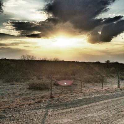 Wishing everyone a wonderful Texastuesday . All the way from Zapataranchtexas . Instagramtexas Igtexas dirtroad cloudporn sunset riograndevalleyigers barbedwirefence mesquite texasbrushcountry hillcountry.@pie_garza19.
