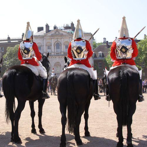 LONDON❤ Guards Horses