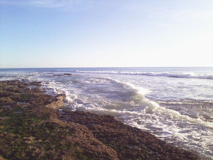 Avencas. Sea. Nature. Life's A Beach. Peaceful Place. Enjoying Life.