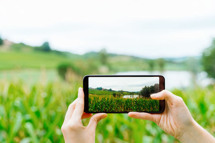 Midsection of person photographing with mobile phone in field