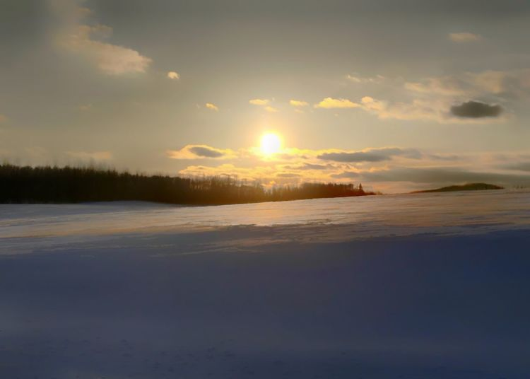 Snow covered field at sunset. Sun Snow Covered Field Horizontal Beauty In Nature Nature Scenics Sunset Tranquility Sky Tranquil Scene Cold Temperature Winter Sun Snow Idyllic Shades Of Winter