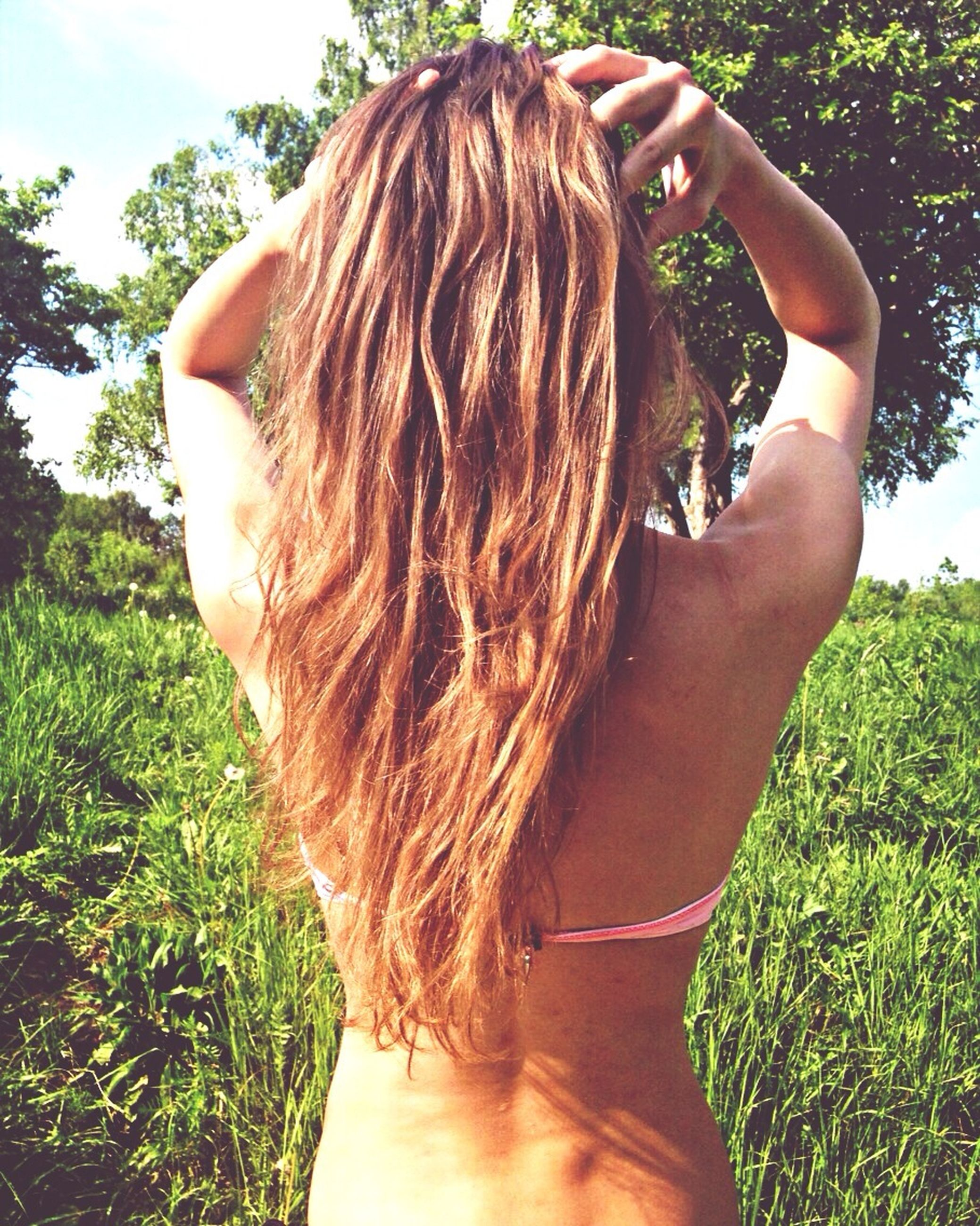 long hair, lifestyles, leisure activity, grass, person, young women, rear view, field, brown hair, blond hair, young adult, human hair, sunlight, sky, outdoors, day, plant