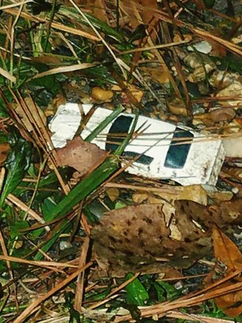 Leaf No People Outdoors Day Nature Water Architecture Toydiscovery Toy Car Forgotten Things Lost Toy