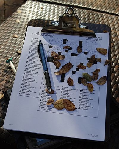 An unfinished crossword puzzle waits for answers under a tree of falling leaves... Autumn Colors Crossword Puzzles Really Fall Beauty Patio Puzzle  Puzzle Time Crosswordpuzzle Playing The Crossword