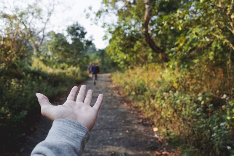 Cropped image of hand gesturing on footpath at forest