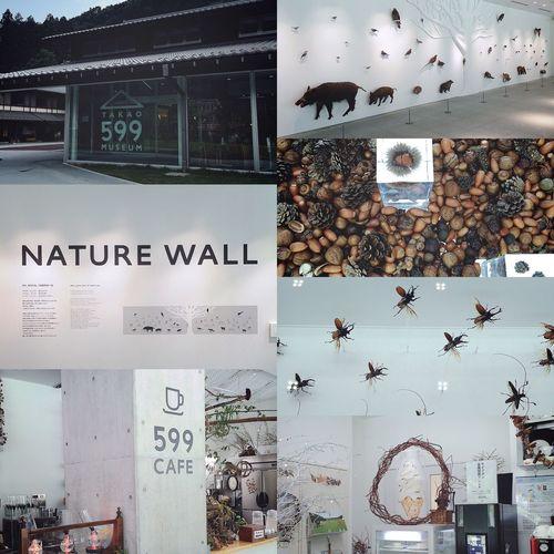 599 ① 秋田山形旅行に行って、帰ってきました!🚙💨 旅行記は、これからぽつらぽつら綴っていきますね✏️📱✨ きょうのページは、初めての高尾山⛰ 【TAKAO 599 MUSEUM】へ行きました🤗 いろいろな動物や植物、昆虫や野鳥たちの剥製が展示してあり、都会にいながらも自然のすばらしさを感じ取ることができました🐗🐺🐒🐀🐿🕊🌲🌳🌿 木の実いっぱいの展示エリアでは、まつぼっくりやどんぐりなどを思う存分に触って、木の実の感触を楽しんだり、羽子板の羽についた木の実を探して弾ませて遊んだり、ちょっとした木の実の宝探し感覚でおもしろかったです✋🏼🌰✨ 『599 CAFE』では、暑かったのでアイスコーヒーを飲みました🍨☕️ ほんとうは、高尾山の珈琲を飲んでみたかったけど、暑すぎて断念🌞💦 室内は涼しかったけど、汗も引かず😵💦 そして屋外は、35°C!ww☀️ もっともっと涼しくなったら、いつか飲みたい珈琲だわ☕️ 599 CAFEは、かなりまったりできるカフェでした🙂👍🏼 つづく。 高尾山 高尾599ミュージアム TAKAO599MUSEUM 599CAFE 599