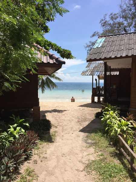 Thailand Tropical Water Plant Tree Sea Sky Nature Built Structure Beach Building Exterior Architecture Land Sunlight Day Incidental People Growth Beauty In Nature Hut Shadow Building Outdoors EyeEmNewHere
