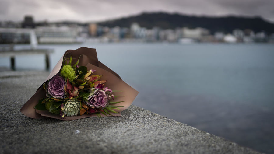 Memorial Wellington Harbour Architecture Beauty In Nature Bouquet Bouquet Of Flowers Built Structure City Close-up Day Flower Flower Arrangement Focus On Foreground Goodbye Loss Nature Outdoors Plant Retaining Wall Sea Selective Focus Water