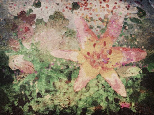 My imaginary Garden will keep me going til the snow melts: NEM Painterly NEM Avantgarde Flowerporn